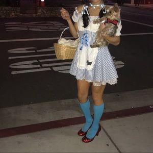 Dorothy Costume Wizard of Oz small dress Dorothy
